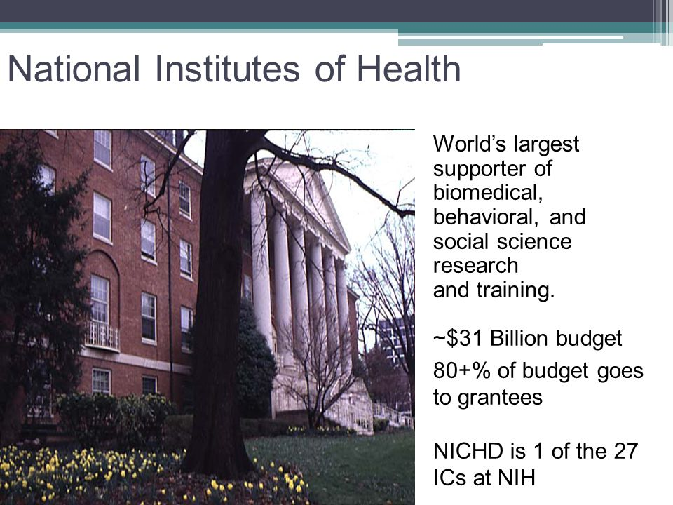Mission of NICHD: Where do learning disabilities fit in.