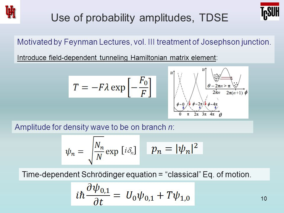Use of probability amplitudes, TDSE 10 Motivated by Feynman Lectures, vol.