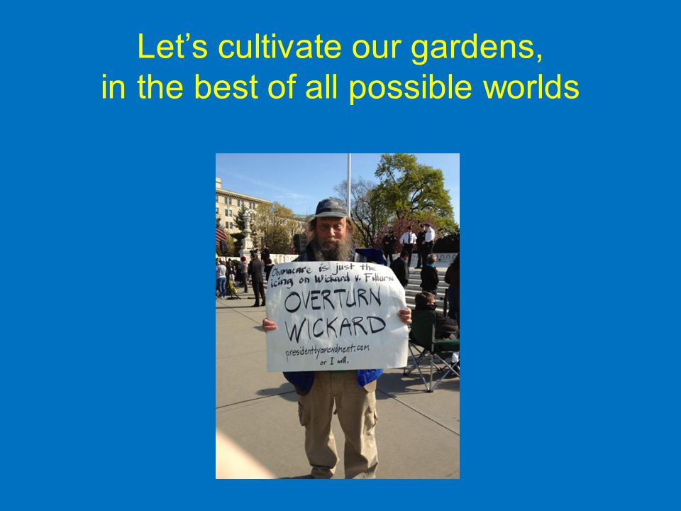 Let's cultivate our gardens, in the best of all possible worlds