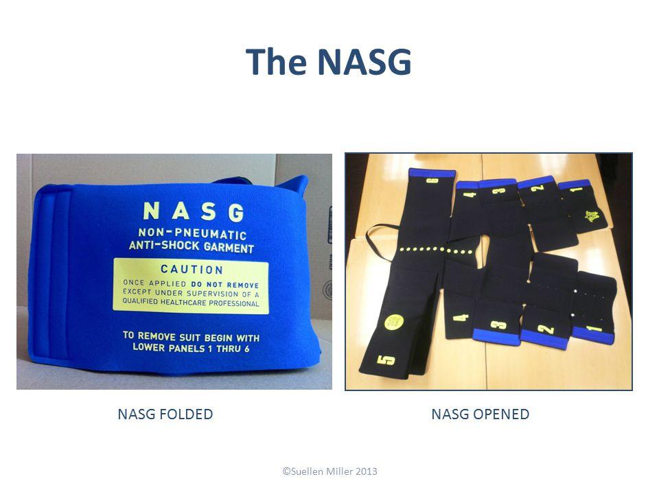The NASG ©Suellen Miller 2013 NASG FOLDEDNASG OPENED