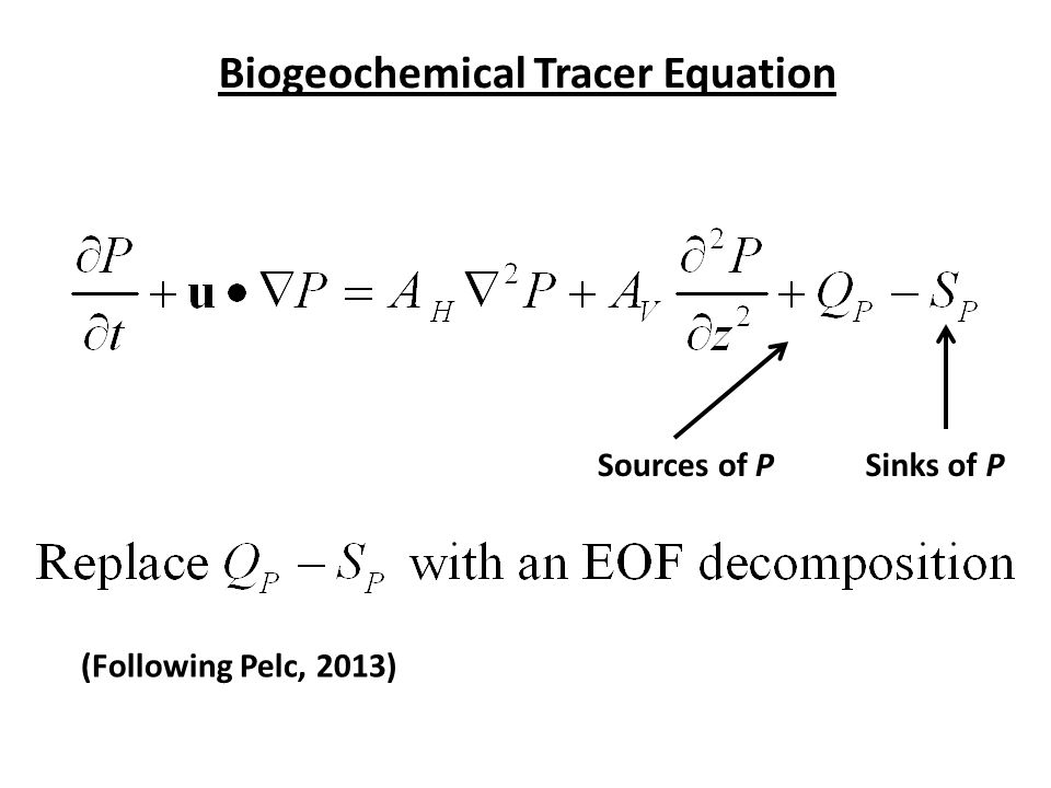 Biogeochemical Tracer Equation Sources of PSinks of P (Following Pelc, 2013)