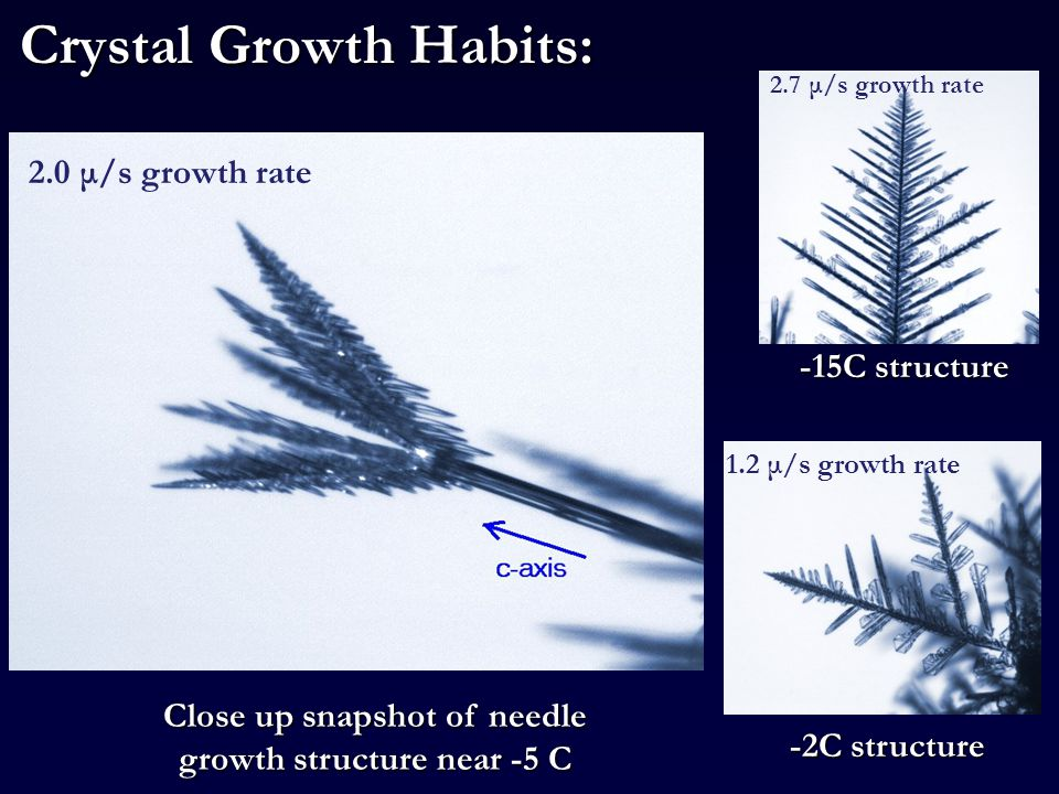 Crystal Growth Habits: Close up snapshot of needle growth structure near -5 C -15C structure 1.2 μ/s growth rate 2.7 μ/s growth rate -2C structure 2.0 μ/s growth rate