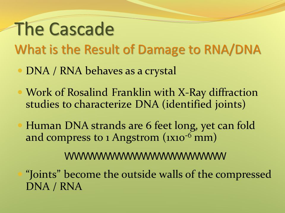 The Cascade What is the Result of Damage to RNA/DNA DNA / RNA behaves as a crystal Work of Rosalind Franklin with X-Ray diffraction studies to charact