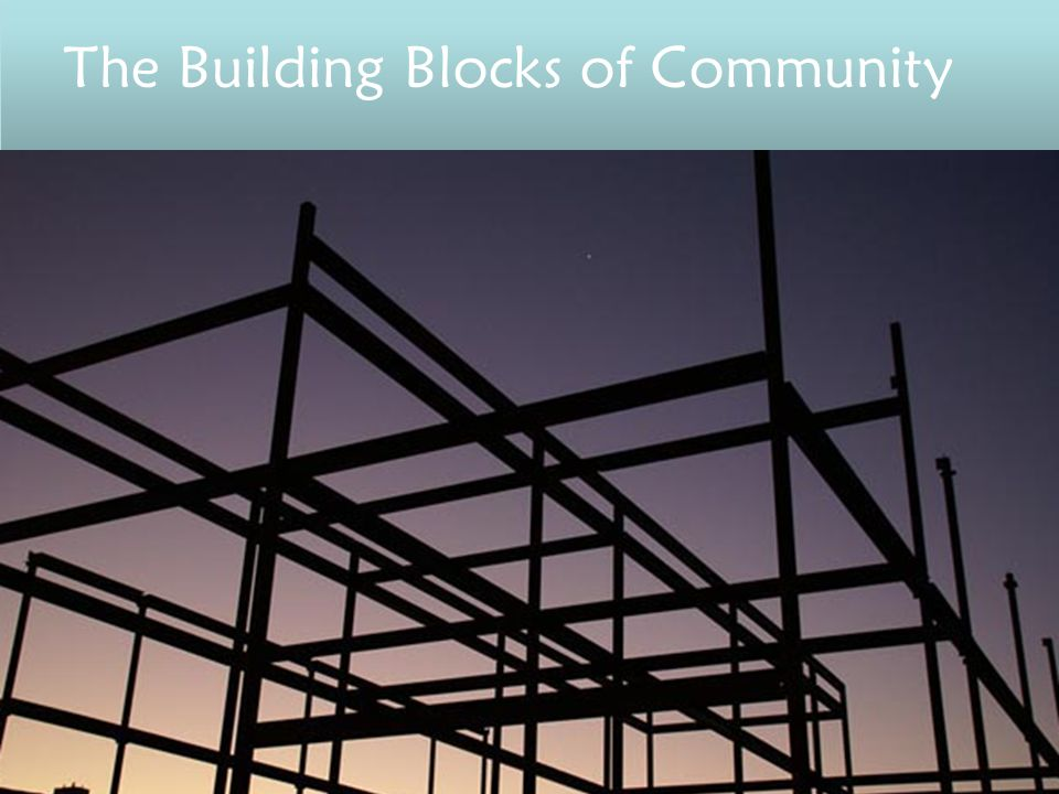 The Building Blocks of Community