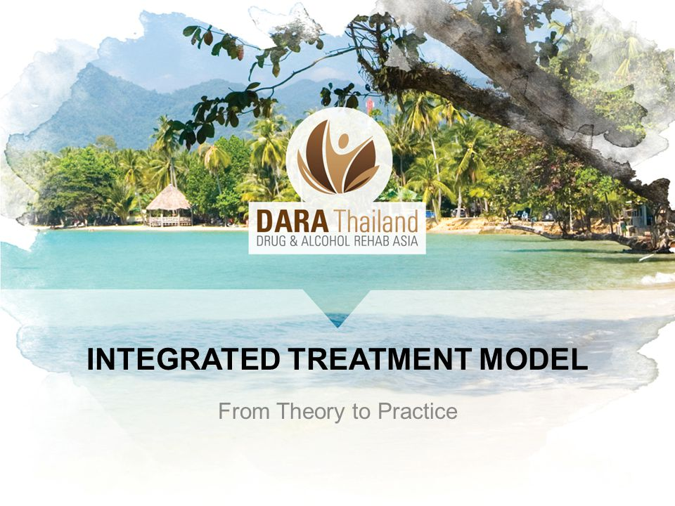 INTEGRATED TREATMENT MODEL From Theory to Practice