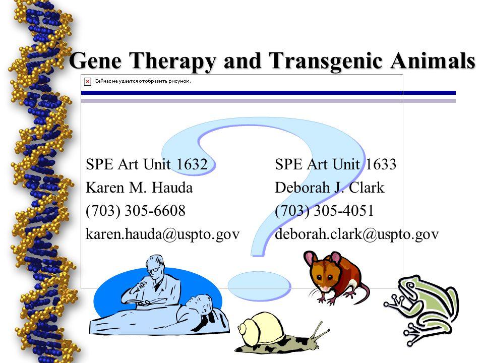 Gene Therapy and Transgenic Animals SPE Art Unit 1632 Karen M.
