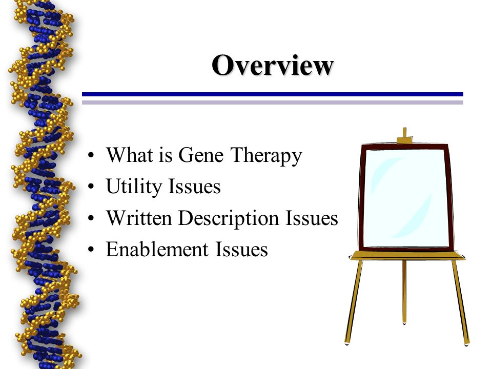 Overview What is Gene Therapy Utility Issues Written Description Issues Enablement Issues