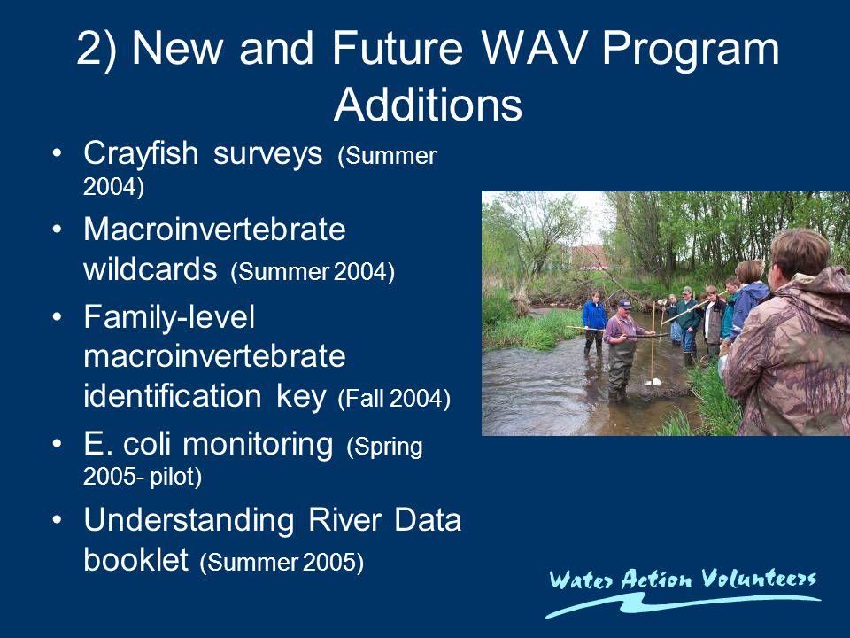 2) New and Future WAV Program Additions Crayfish surveys (Summer 2004) Macroinvertebrate wildcards (Summer 2004) Family-level macroinvertebrate identification key (Fall 2004) E.