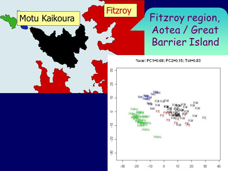 Fitzroy Motu Kaikoura Fitzroy region, Aotea / Great Barrier Island