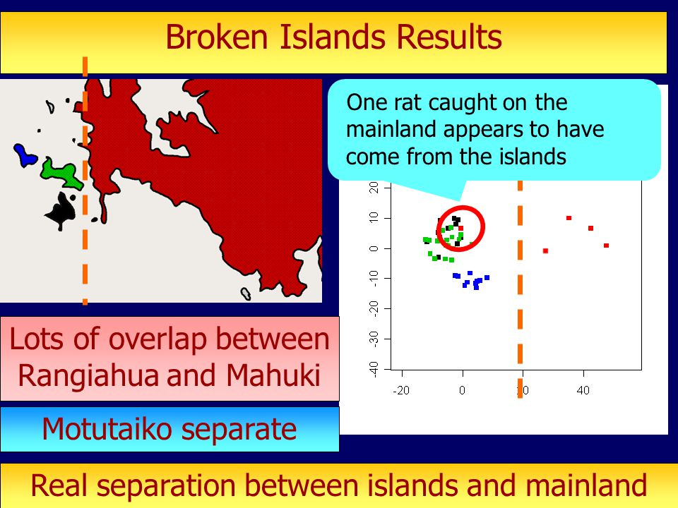 Broken Islands Results Lots of overlap between Rangiahua and Mahuki Motutaiko separate Real separation between islands and mainland One rat caught on the mainland appears to have come from the islands