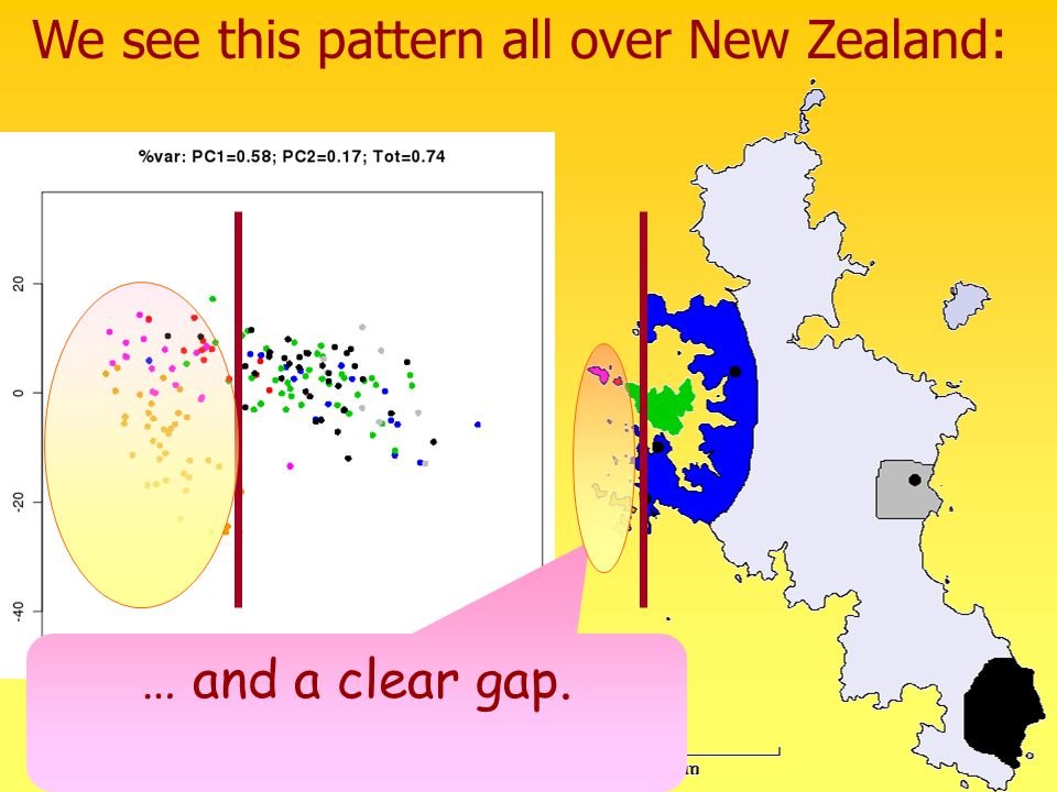 We see this pattern all over New Zealand: … and a clear gap.