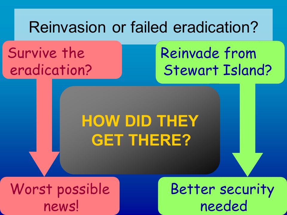 Reinvasion or failed eradication. Survive the eradication.