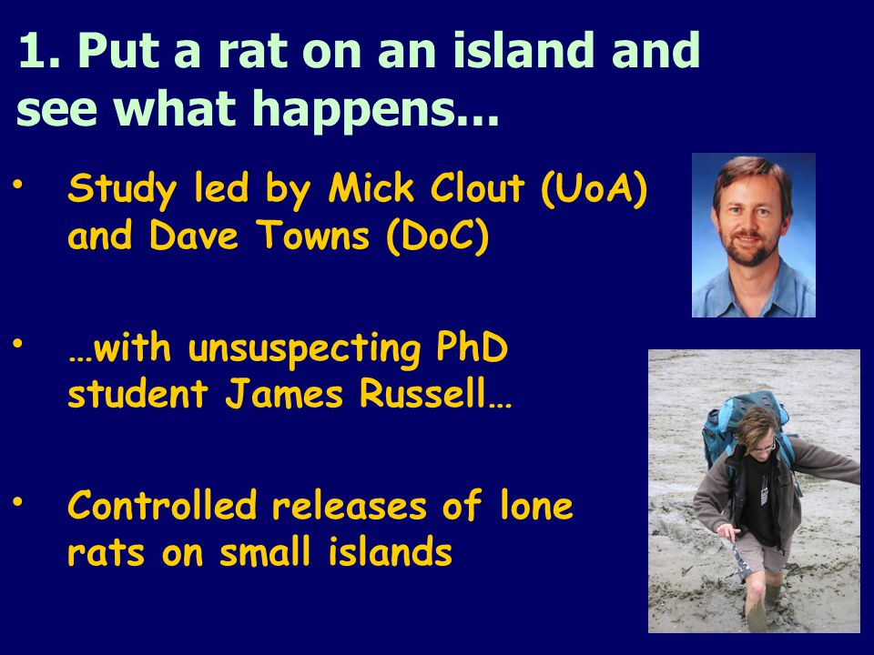 1. Put a rat on an island and see what happens...