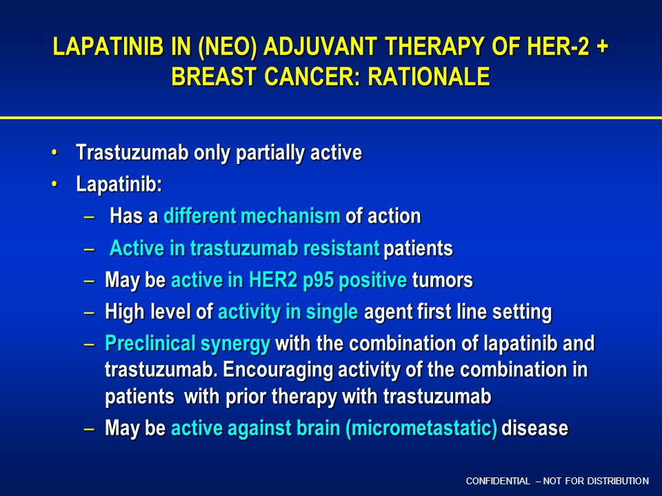 CONFIDENTIAL – NOT FOR DISTRIBUTION LAPATINIB IN (NEO) ADJUVANT THERAPY OF HER-2 + BREAST CANCER: RATIONALE Trastuzumab only partially active Trastuzumab only partially active Lapatinib: Lapatinib: – Has a different mechanism of action – Active in trastuzumab resistant patients – May be active in HER2 p95 positive tumors – High level of activity in single agent first line setting – Preclinical synergy with the combination of lapatinib and trastuzumab.