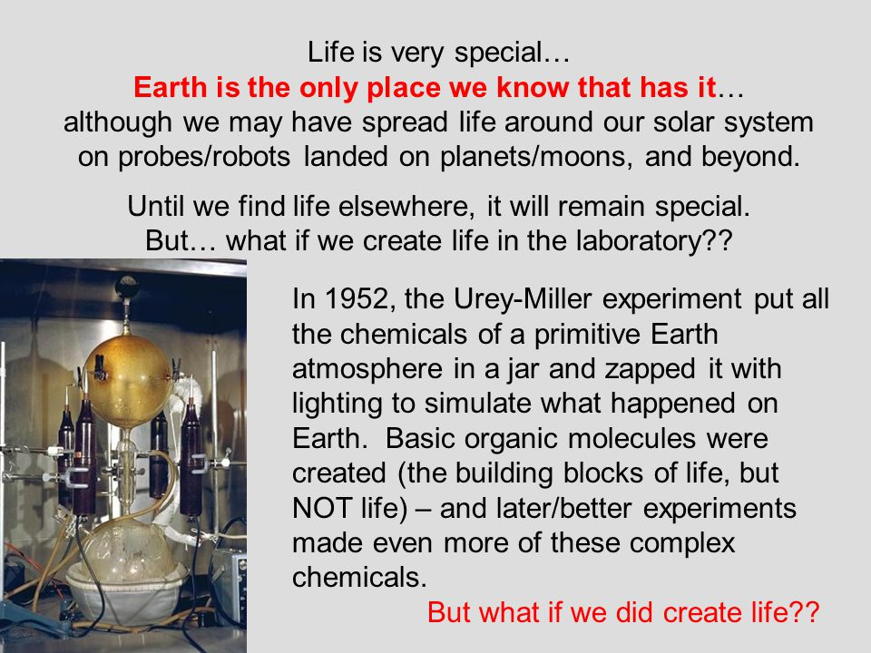 Life is very special… Earth is the only place we know that has it… although we may have spread life around our solar system on probes/robots landed on planets/moons, and beyond.