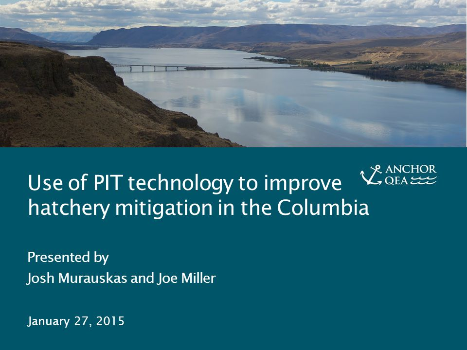 PIT Technology and Hatchery Mitigation J. Murauskas and J.