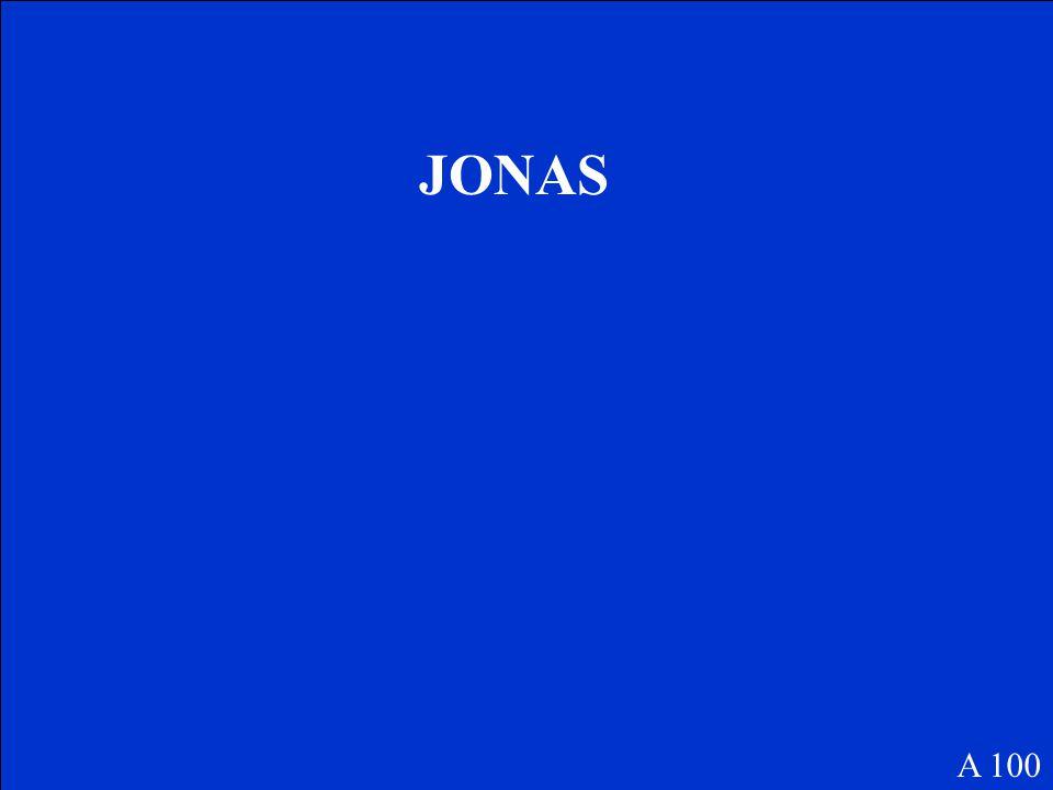 JONAS A 100