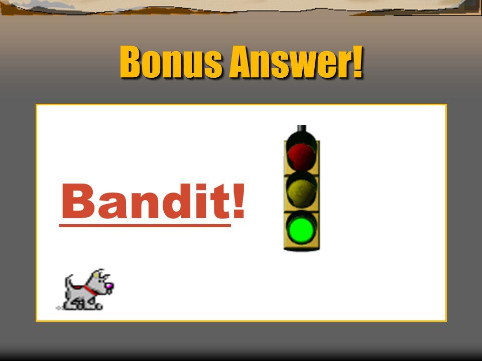 Bonus Answer! Bandit!