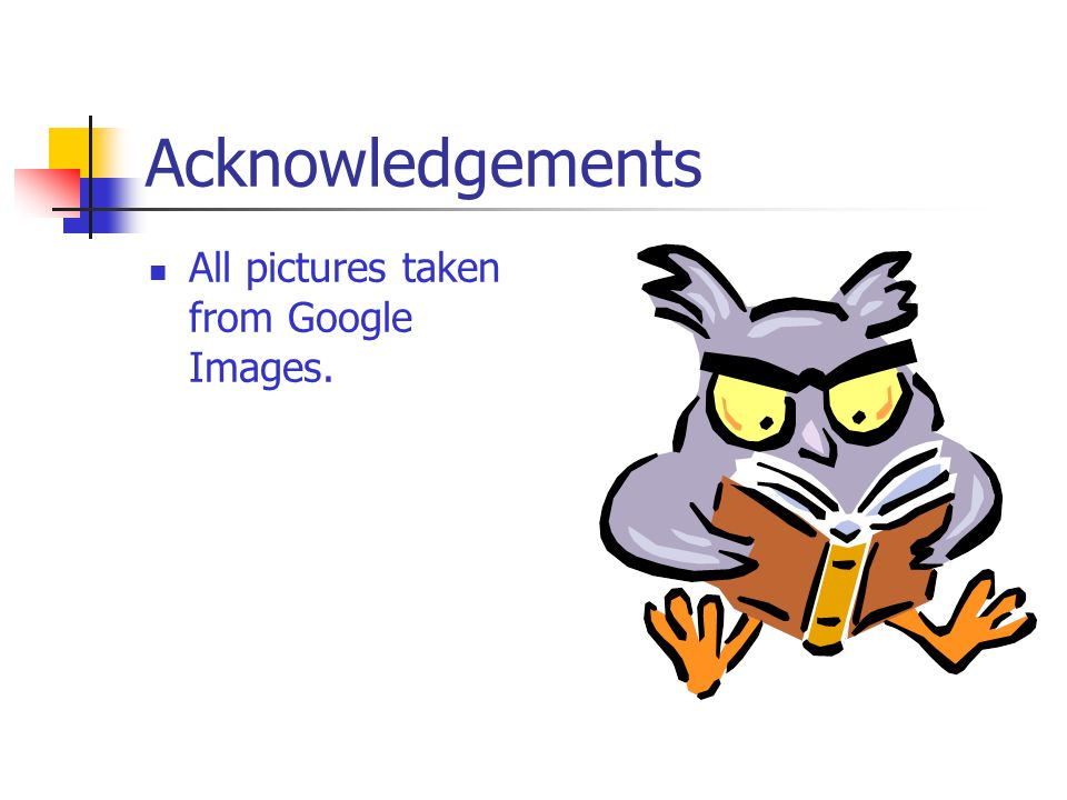 Acknowledgements All pictures taken from Google Images.