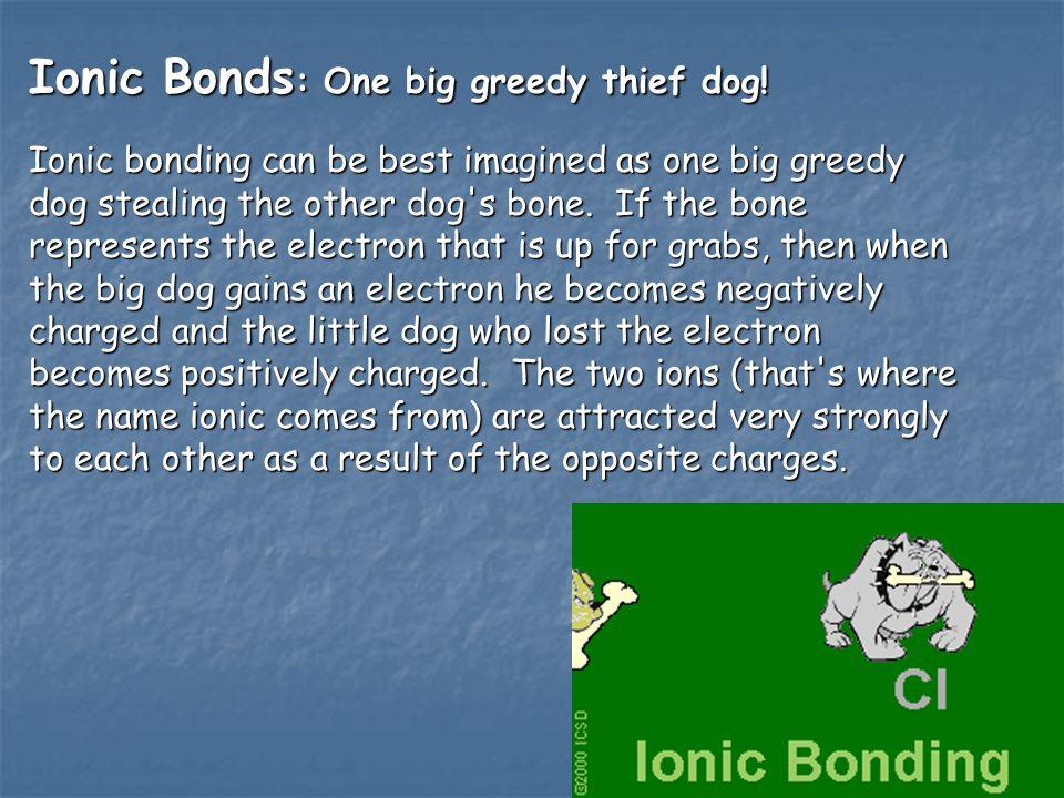 Ionic Bonds : One big greedy thief dog.