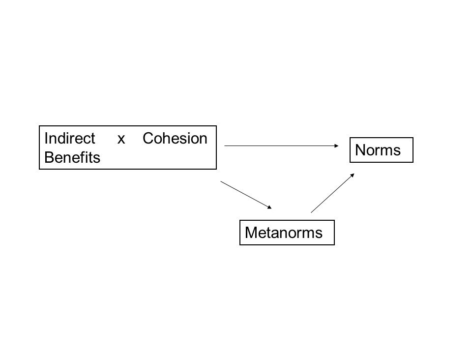 Hypotheses H1: Indirect benefits x Cohesion  Norms H2: Indirect benefits x Cohesion  Metanorms H3: Metanorms  Norms