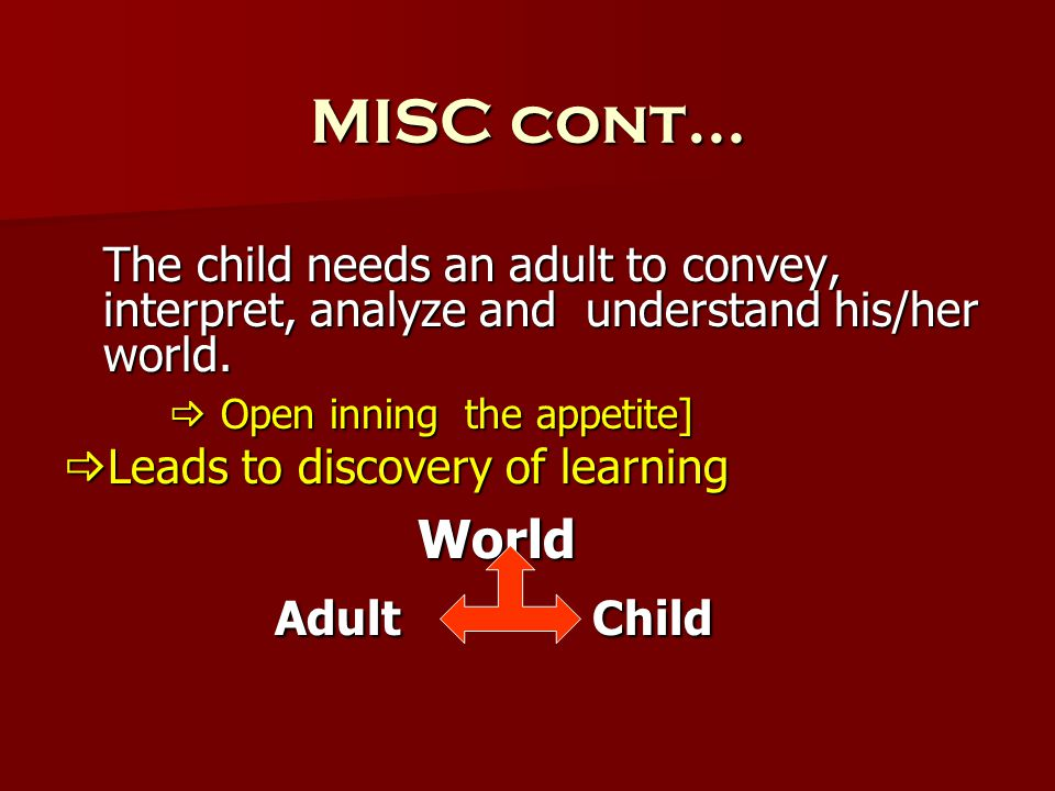 MISC cont… The child needs an adult to convey, interpret, analyze and understand his/her world.