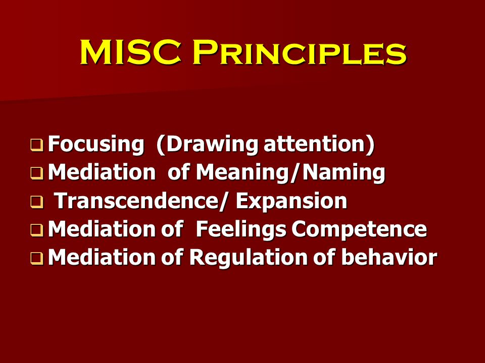 MISC Principles  Focusing (Drawing attention)  Mediation of Meaning/Naming  Transcendence/ Expansion  Mediation of Feelings Competence  Mediation of Regulation of behavior