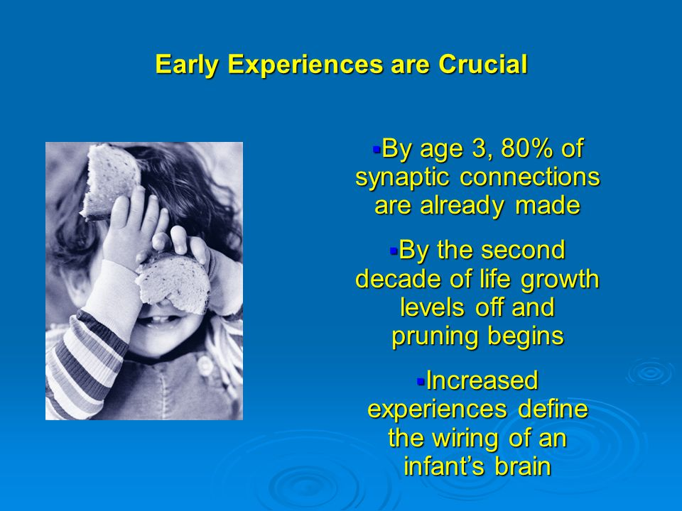 Early Experiences are Crucial  By age 3, 80% of synaptic connections are already made  By the second decade of life growth levels off and pruning begins  Increased experiences define the wiring of an infant's brain