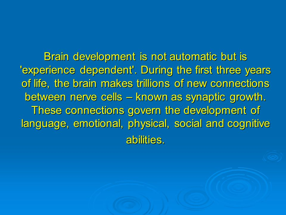 Brain development is not automatic but is 'experience dependent'. During the first three years of life, the brain makes trillions of new connections b