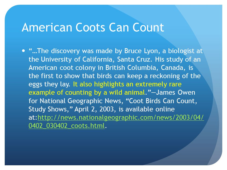 American Coots Can Count …The discovery was made by Bruce Lyon, a biologist at the University of California, Santa Cruz.