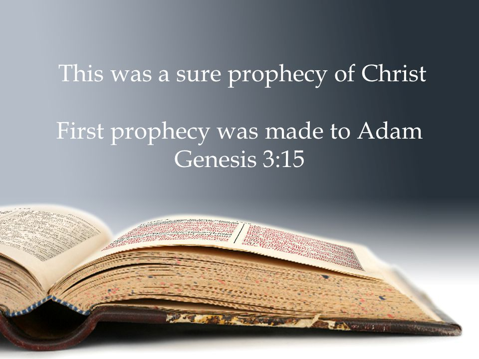 This was a sure prophecy of Christ First prophecy was made to Adam Genesis 3:15