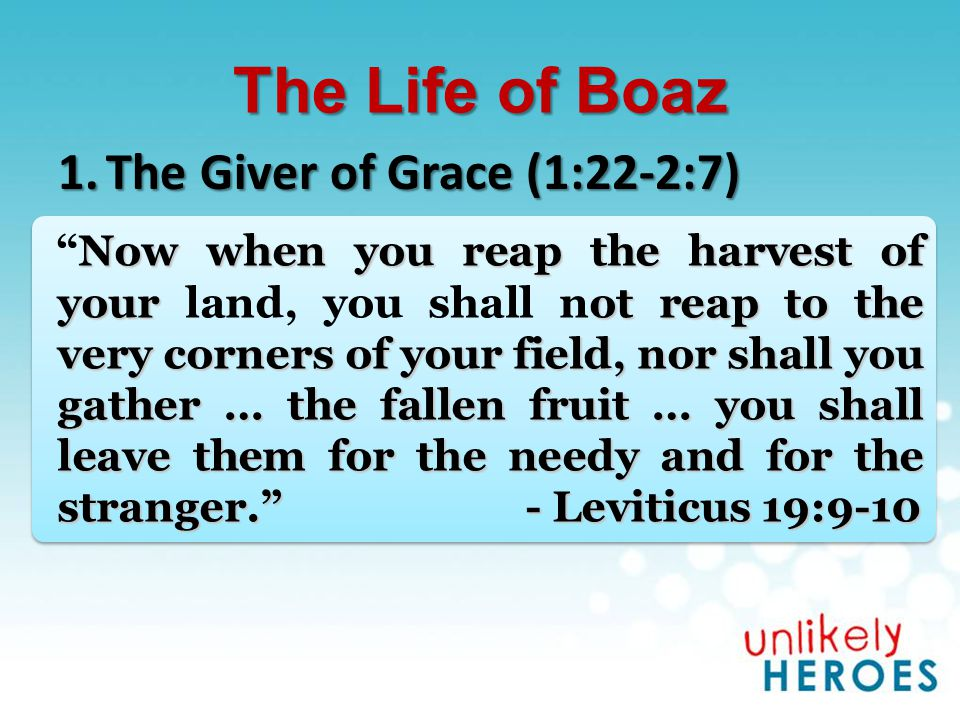 The Life of Boaz 1.The Giver of Grace (1:22-2:7) Now when you reap the harvest of your ot reap to the very corners of your field, nor shall you gather … the fallen fruit … you shall leave them for the needy and for the stranger. - Leviticus 19:9-10 Now when you reap the harvest of your land, you shall not reap to the very corners of your field, nor shall you gather … the fallen fruit … you shall leave them for the needy and for the stranger. - Leviticus 19:9-10