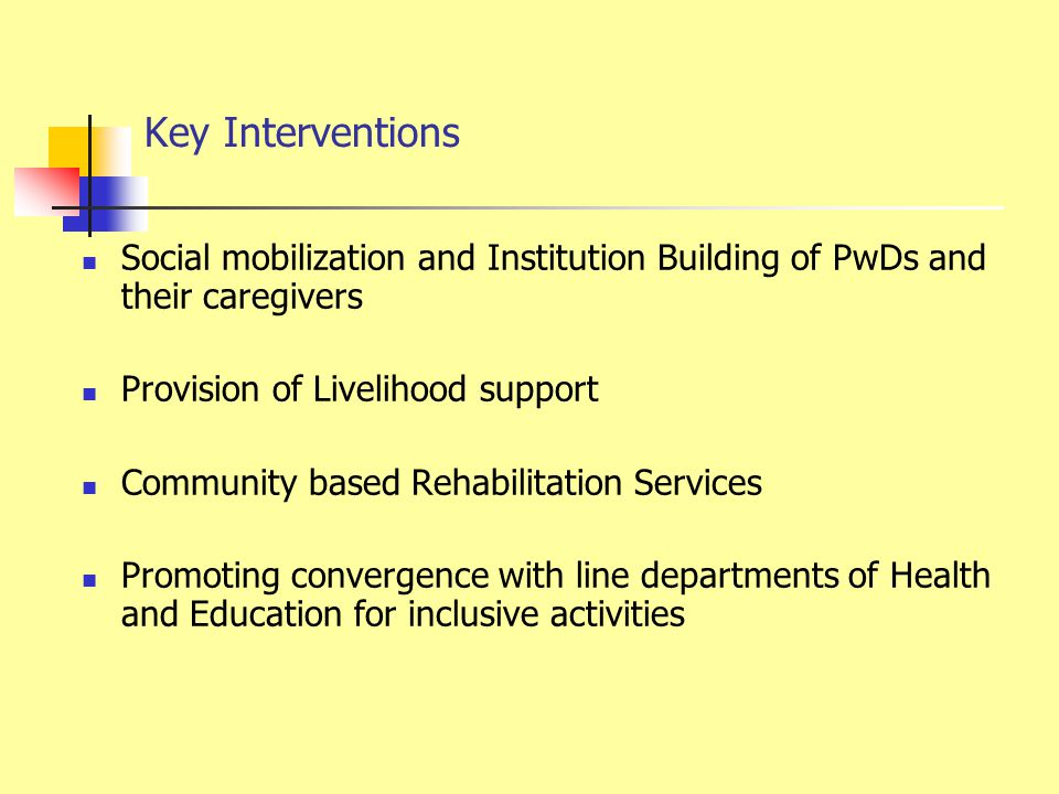Key Interventions Social mobilization and Institution Building of PwDs and their caregivers Provision of Livelihood support Community based Rehabilitation Services Promoting convergence with line departments of Health and Education for inclusive activities