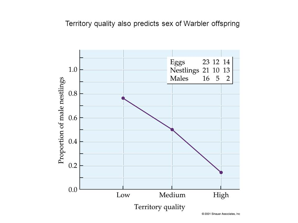 Territory quality also predicts sex of Warbler offspring