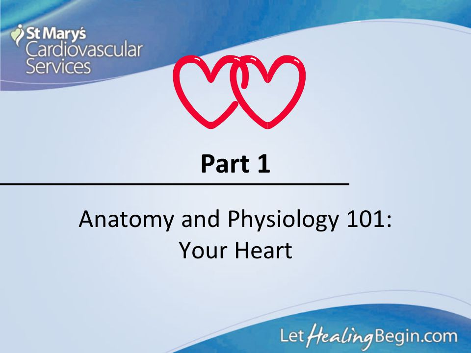 Course Outline 1.Anatomy and Physiology 101: Your Heart 2.A Heart Attack in Progress 3.Concepts of Early Heart Attack Care 4.Recognition and Intervent