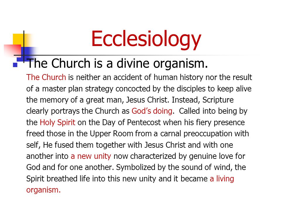 Ecclesiology The Church is a divine organism.