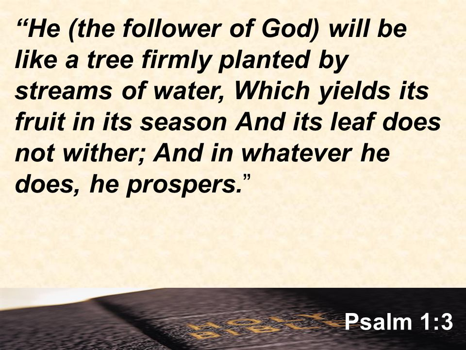 Psalm 1:3 He (the follower of God) will be like a tree firmly planted by streams of water, Which yields its fruit in its season And its leaf does not wither; And in whatever he does, he prospers.