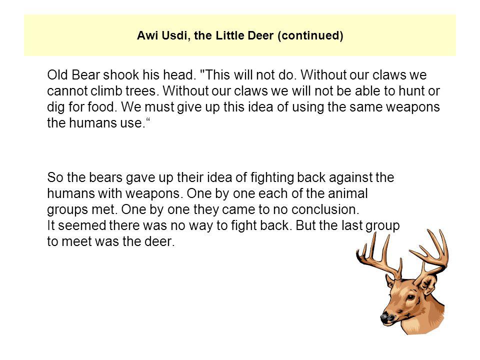 Old Bear shook his head.
