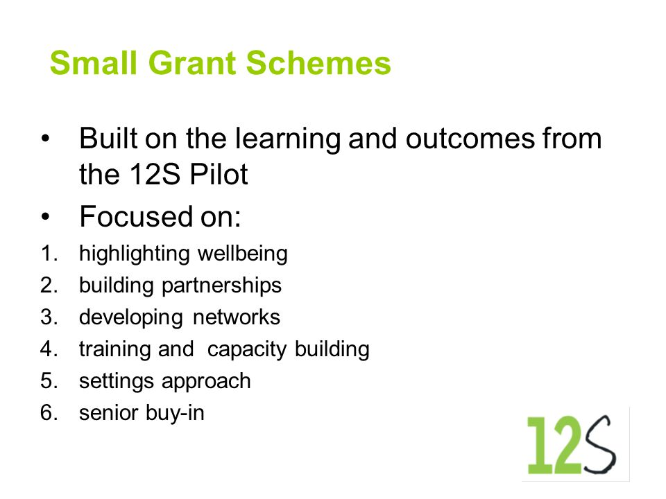 Small Grant Schemes Built on the learning and outcomes from the 12S Pilot Focused on: 1.highlighting wellbeing 2.building partnerships 3.developing ne