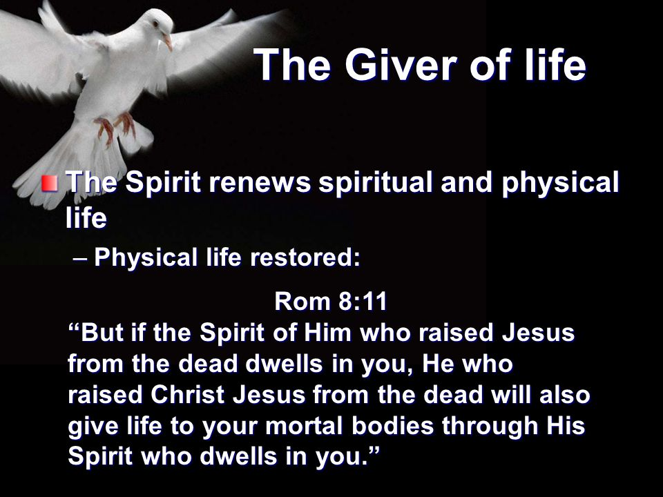 """The Giver of life The Spirit renews spiritual and physical life –Physical life restored: Rom 8:11 """"But if the Spirit of Him who raised Jesus from the"""
