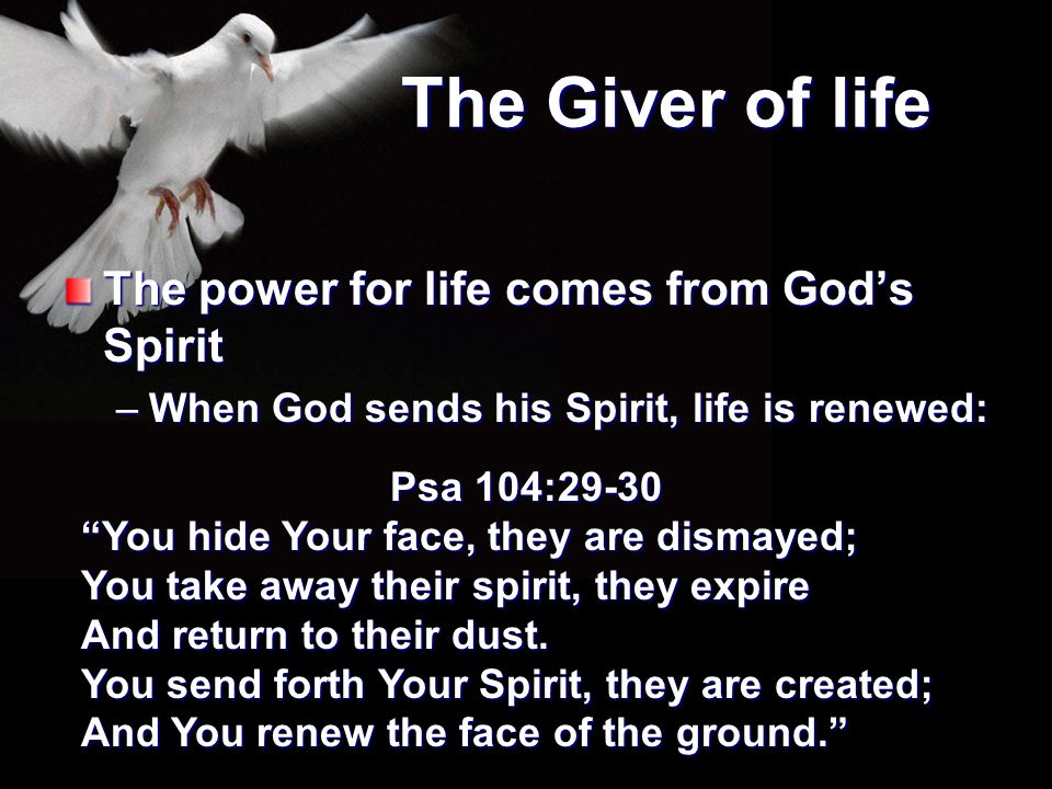 """The Giver of life The power for life comes from God's Spirit –When God sends his Spirit, life is renewed: Psa 104:29-30 """"You hide Your face, they are"""