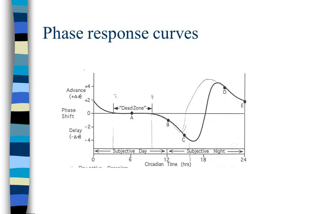 Phase response curves