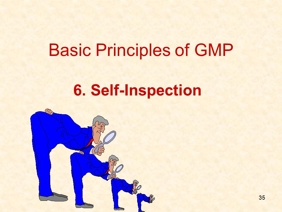 35 6. Self-Inspection Basic Principles of GMP