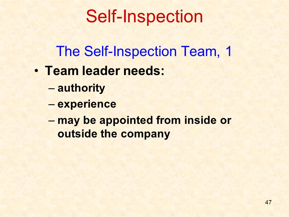 47 Self-Inspection The Self-Inspection Team, 1 Team leader needs: –authority –experience –may be appointed from inside or outside the company