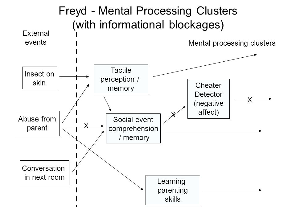 Freyd - Mental Processing Clusters (with informational blockages) Abuse from parent Conversation in next room Insect on skin Tactile perception / memory Social event comprehension / memory Learning parenting skills Cheater Detector (negative affect) External events Mental processing clusters X X X