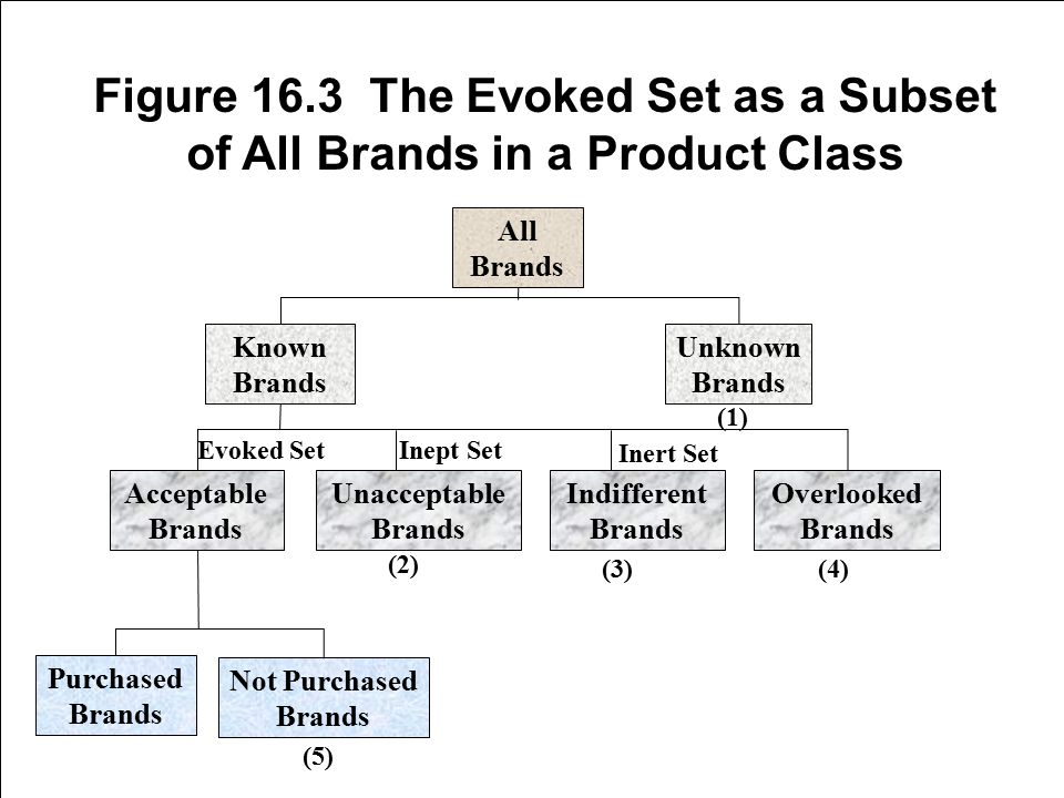 16-19 Figure 16.3 The Evoked Set as a Subset of All Brands in a Product Class All Brands Known Brands Unknown Brands Overlooked Brands Indifferent Bra