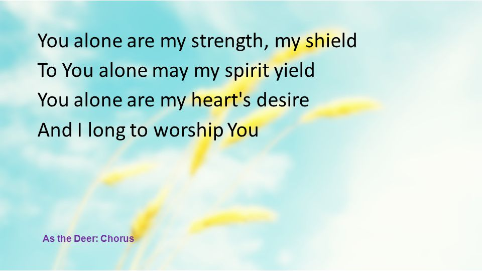 You alone are my strength, my shield To You alone may my spirit yield You alone are my heart s desire And I long to worship You As the Deer: Chorus