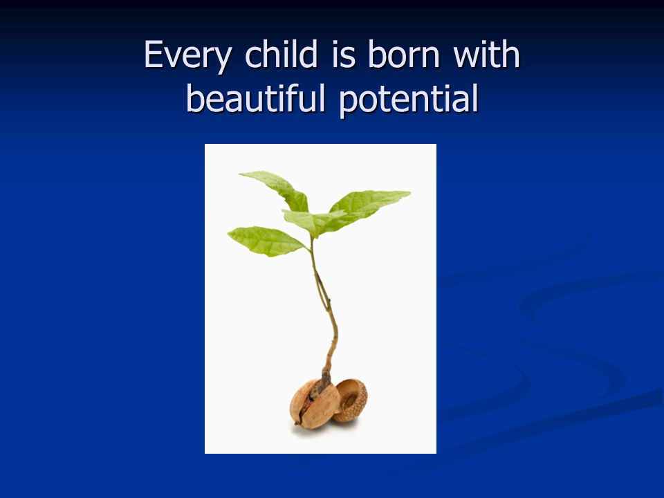 Every child is born with beautiful potential