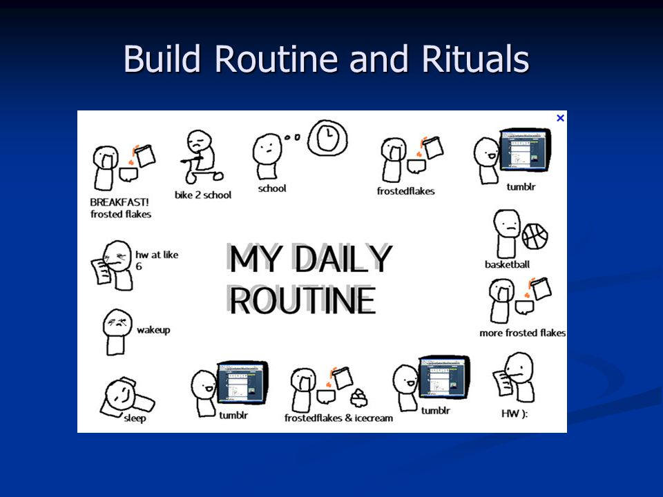 Build Routine and Rituals