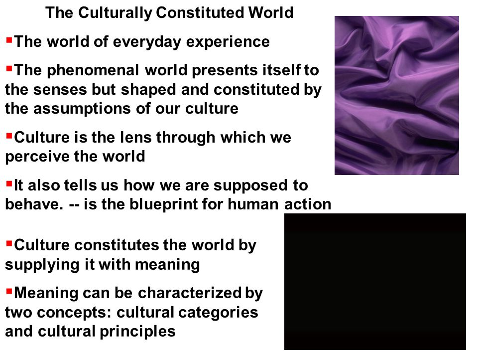The Culturally Constituted World  The world of everyday experience  The phenomenal world presents itself to the senses but shaped and constituted by the assumptions of our culture  Culture is the lens through which we perceive the world  It also tells us how we are supposed to behave.